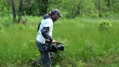 Photo: Нелегкая это работа - по болотам таскать свое фото!