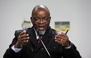 Mineral Resources Minister Gwede Mantashe .