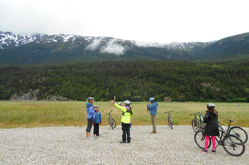 bike bear spotting.JPG - We spotted a bear during our bike riding excursion off RSSC Mariner
