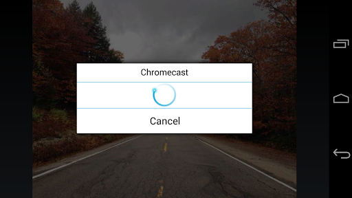 ES Chromecast plugin screenshot 4