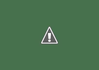 Prevención de Alacranes