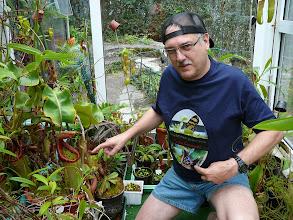 Photo: Mäusefressende Truncata. T-shirt von der portugiesischen Karnivorengesellschaft.  Mice eating Truncata. T-shirt made by the Portuguese CPS.