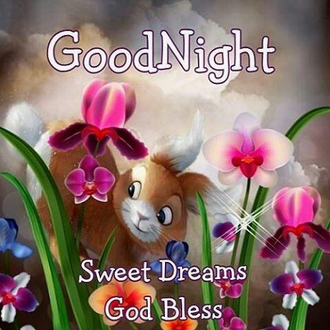 Download Good Night Wishes And Blessing Apk Latest Version App By