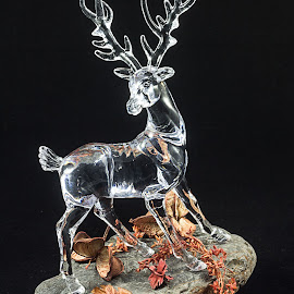 Deer. by Simon Page - Artistic Objects Glass