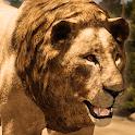 Ultimate Lion Simulator icon