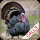 Turkey calls (app)