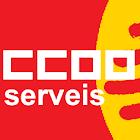 CCOO Serveis icon