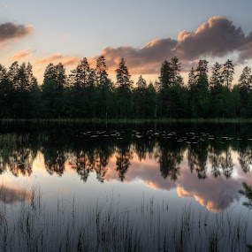 Lake in Finland by Gernot Koller - Landscapes Waterscapes