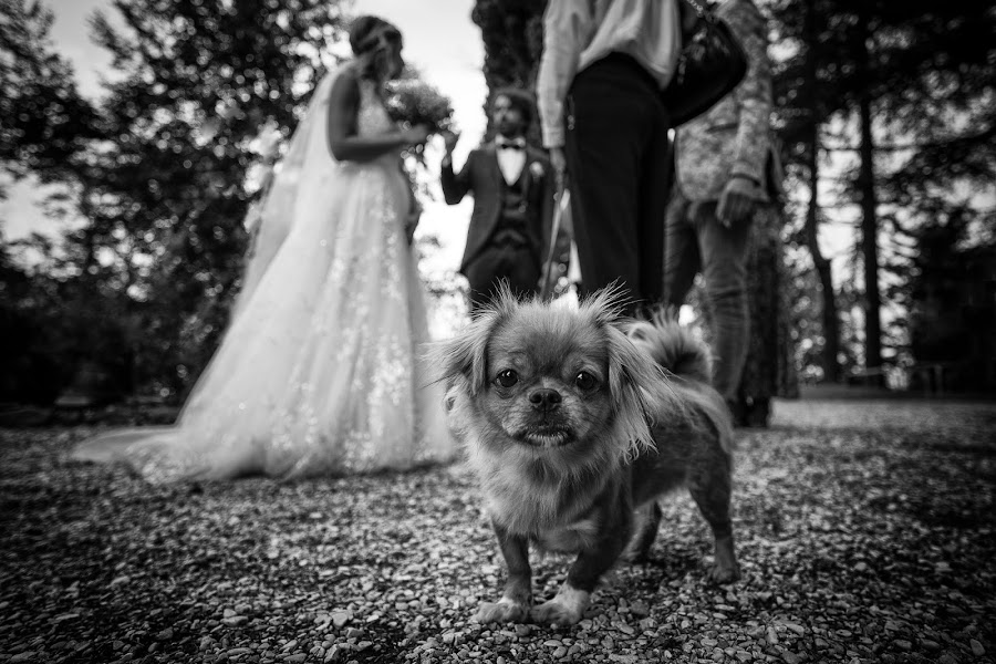 ช่างภาพงานแต่งงาน Barbara Fabbri (fabbri) ภาพเมื่อ 08.03.2019