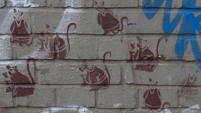 Photo: Stencil; Ratten: Unknown Artist