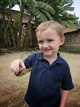 Photo: He kijk, hier zijn dikke slakken in de tuin zeg!