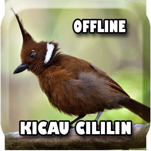 Masteran Cililin Gacor Offline Apps En Google Play