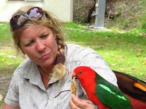 Photo: Year 2 Day 147 - Feeding the Parrots #2