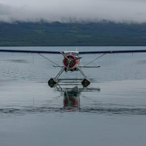 Airplane landing at Brooks Lodge. by Gusty Stambaugh - Transportation Airplanes ( water, brooks lodge, floatplane, lake, katmai )