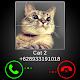 Fake Call Cat Joke (game)