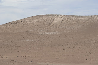 Photo: Der Riese der Atacama