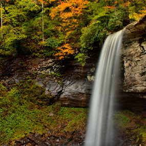 Lower Falls of Hill Creek by Kevin Frick - Landscapes Waterscapes ( autumn, west virginia, fall, waterfall, leaves, hill creek )