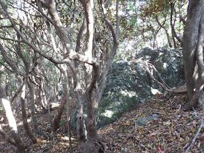 岩が現れる(左から廻り込む)