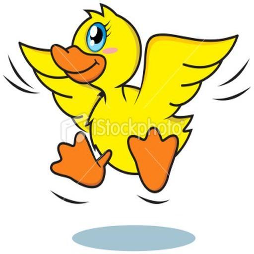 Airline ducks iii