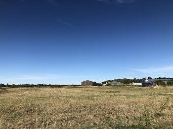 terrain à Saint-Martin-de-Sanzay (79)