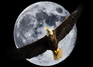 Photo: Blue Moon Eagle