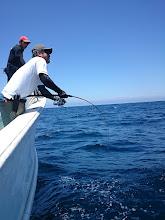 Photo: いきなり! 「グイーーーン!」ってドラグが出はじめました! ・・・多分、魚が変わりました! そうです!「サメ」です! しかし、ガンバってファイトします!