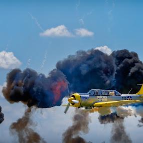 - Ursuleţul aruncă bomba...-detaliu- by Krishna & Garuda (Adrian Radu) - Transportation Airplanes