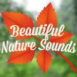 Beautiful Nature Sounds Icon