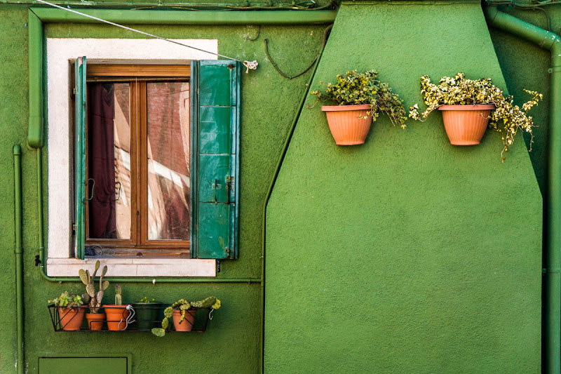 Green house di fedevphoto
