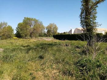 terrain à Prignac (17)