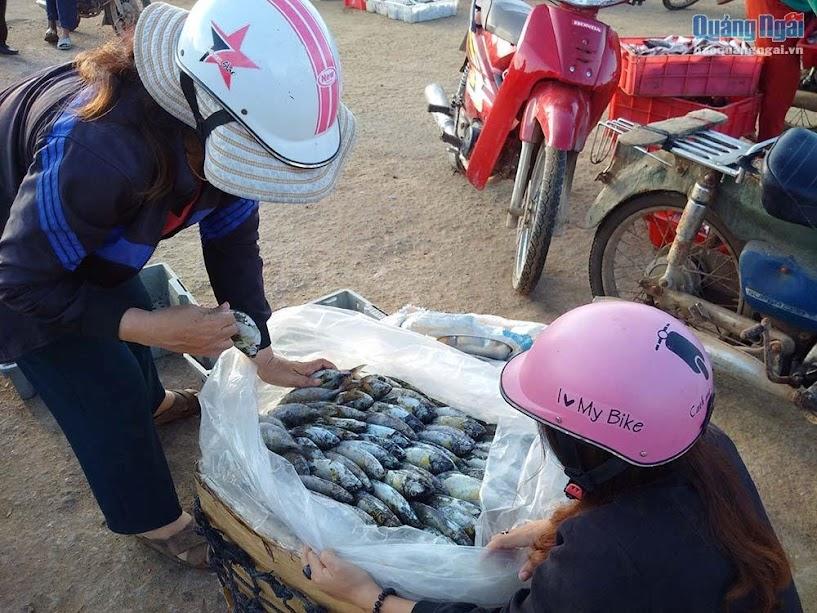 Cá được đóng thùng để chuyển vào đất liền