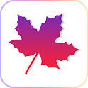 Maple corner icon