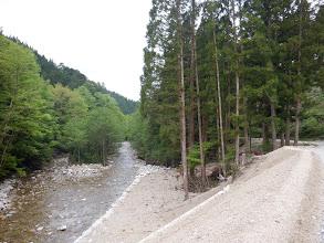 景色を見ながら林道歩き