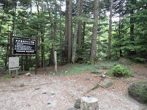 本沢温泉キャンプ場