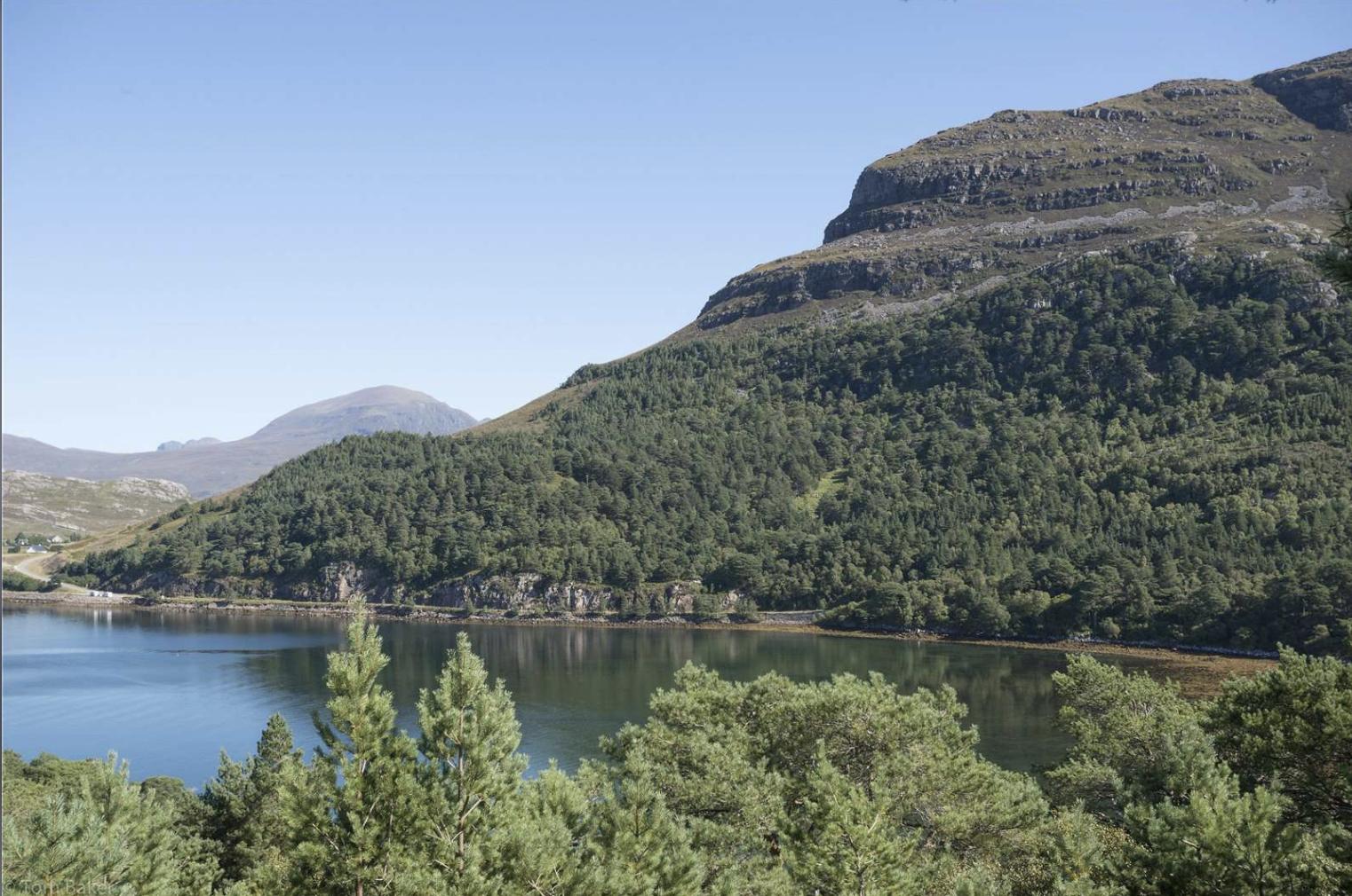 Lakeside near Balgy Lodge