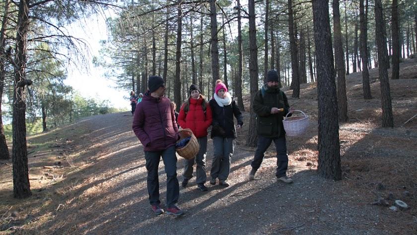 Participantes en la salida al monte para buscar setas.