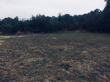 terrain à Arrigny (51)