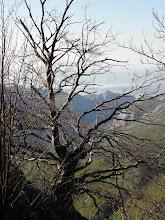 Photo: Ovdje još gotovo da i nema vegetacije