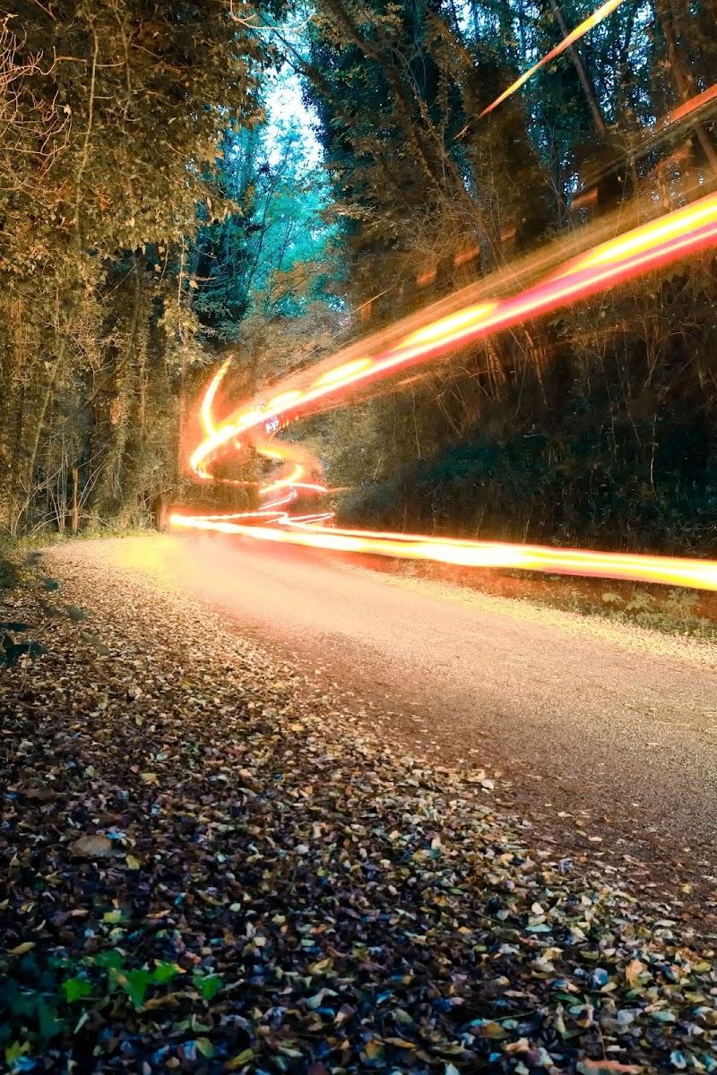Autumn Street di Gianluca Gerardi