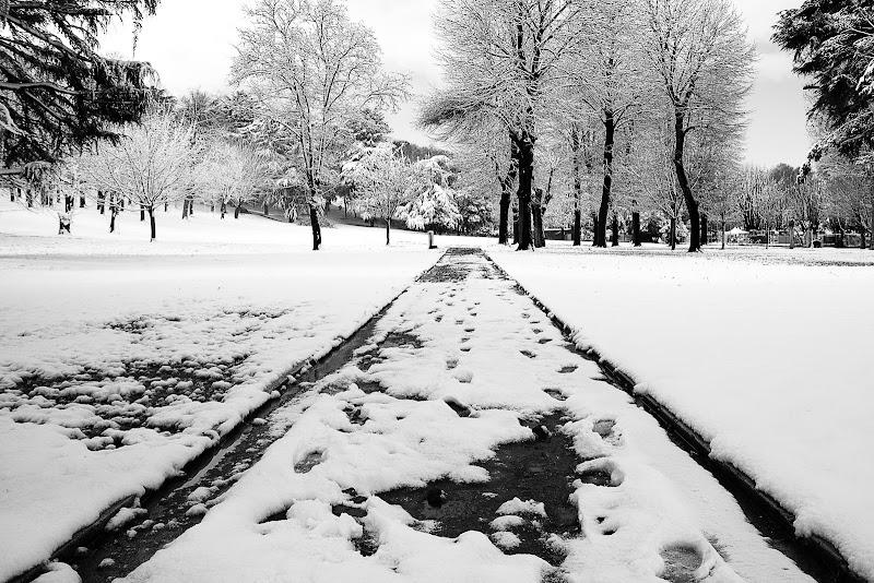 nella neve di lufe