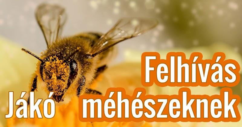 Felhívás méhészeknek 2018