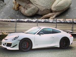 911のカスタム事例画像 porsche.whitefrogsさんの2020年11月14日15:23の投稿