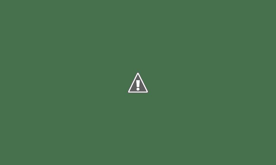 A LAS 11.05 HORAS, VOTÓ EL LEGISLADOR LICHI SCARLATTO EN EL INSTITUTO LA SANTÍSIMA TRINIDAD