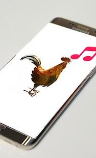 Rooster Sounds Ringtones - náhled