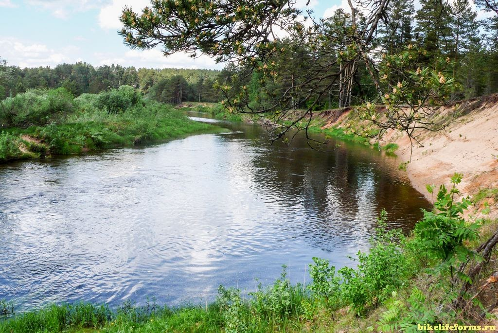 река Тьма