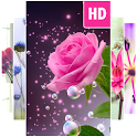 Flower Wallpapers icon