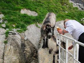 Photo: Feeding time