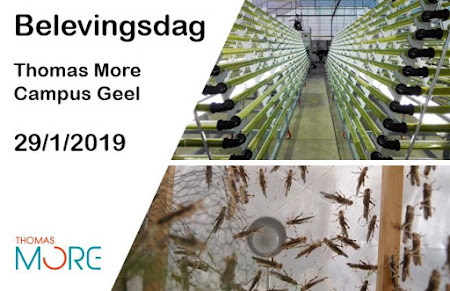 29 januari 2019 Belevingsdag @ Thomas More Geel