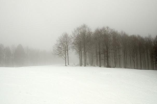 Un sottile velo di nebbia di alezarp75