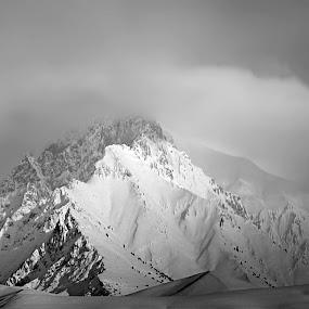 Mounts Alborz by Fereshteh Molavi - Landscapes Mountains & Hills ( snow, rucks, sky clouds, montains )
